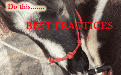 Best Practices – Don't Cross-tie!