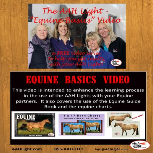AAH Light, photonic heal, photonic therapy, AAH equine basics