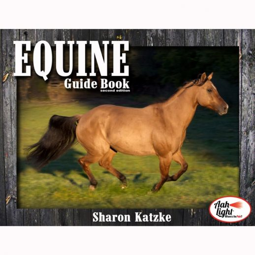 AAH Light, photonic heal, photonic therapy, AAH equine guide book