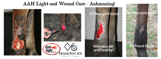 aah light, wound care, diamond six ranch, red light healing