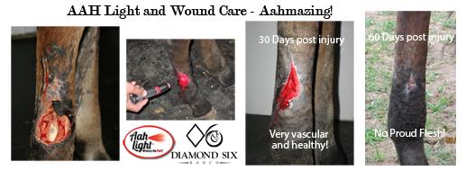 aah light, wound care, diamond six ranch, red light healing