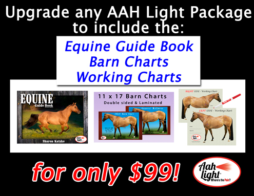 Equine Guide books, acupressure charts equine, aah light
